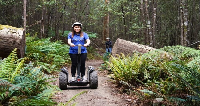 Forest Segway Adventure, 90 Minutes - Launceston, TAS
