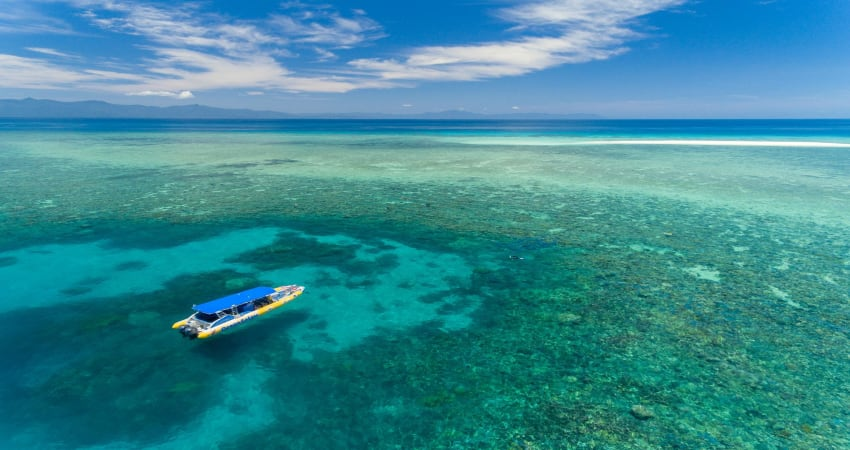 Great Barrier Reef Snorkelling Safari