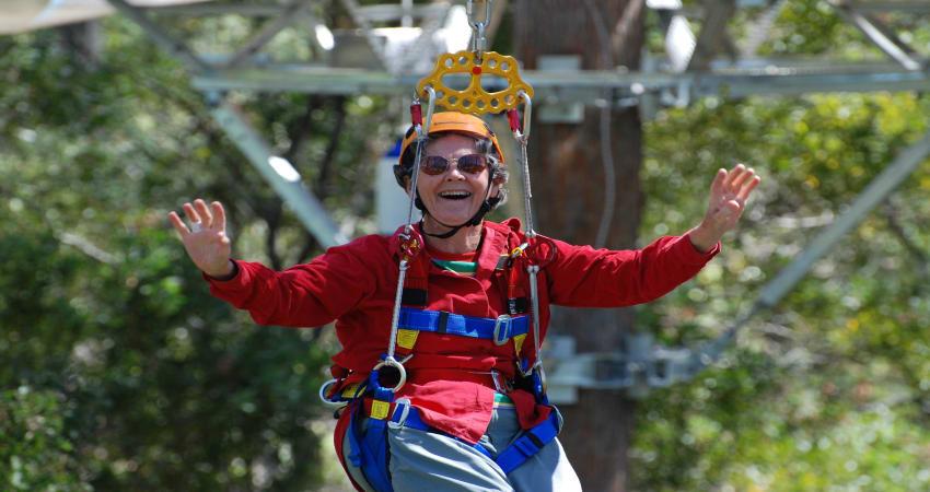 Canopy Zip Lining Adventure, 3 Hours - Launceston, TAS