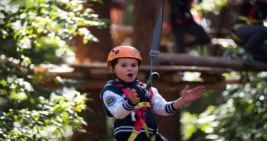 Children's Treetop Adventure Course - Coffs Harbour