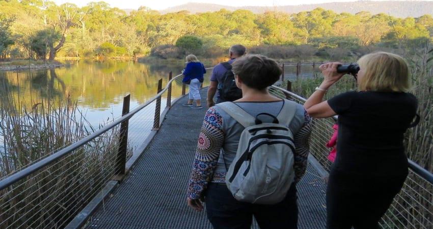 Tidbinbilla Wildlife and E-Bike Tour, 4.5 Hours -