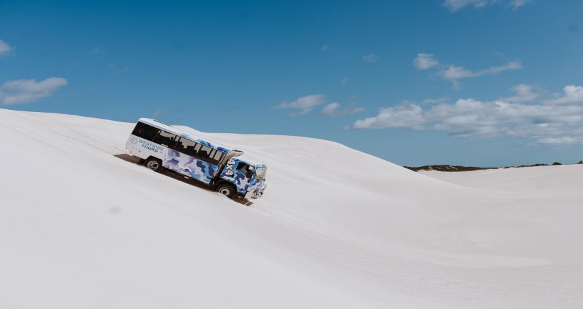 Full Day Pinnacles, Lancelin 4WD and National Park Tour - Lancelin Dunes, Perth