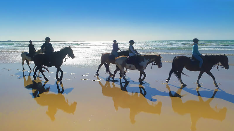Horse Riding on the Beach 3 hours - Bakers Beach