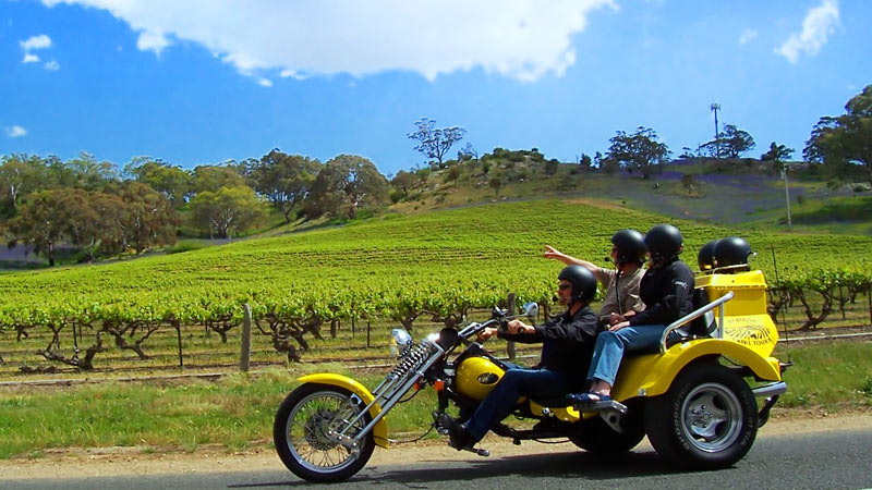 Barossa Uncut 3.5hr Trike Tour for 2 - Barossa Valley