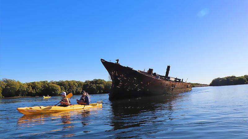 Dolphin Sanctuary & Ship Wreck Kayak - Adelaide