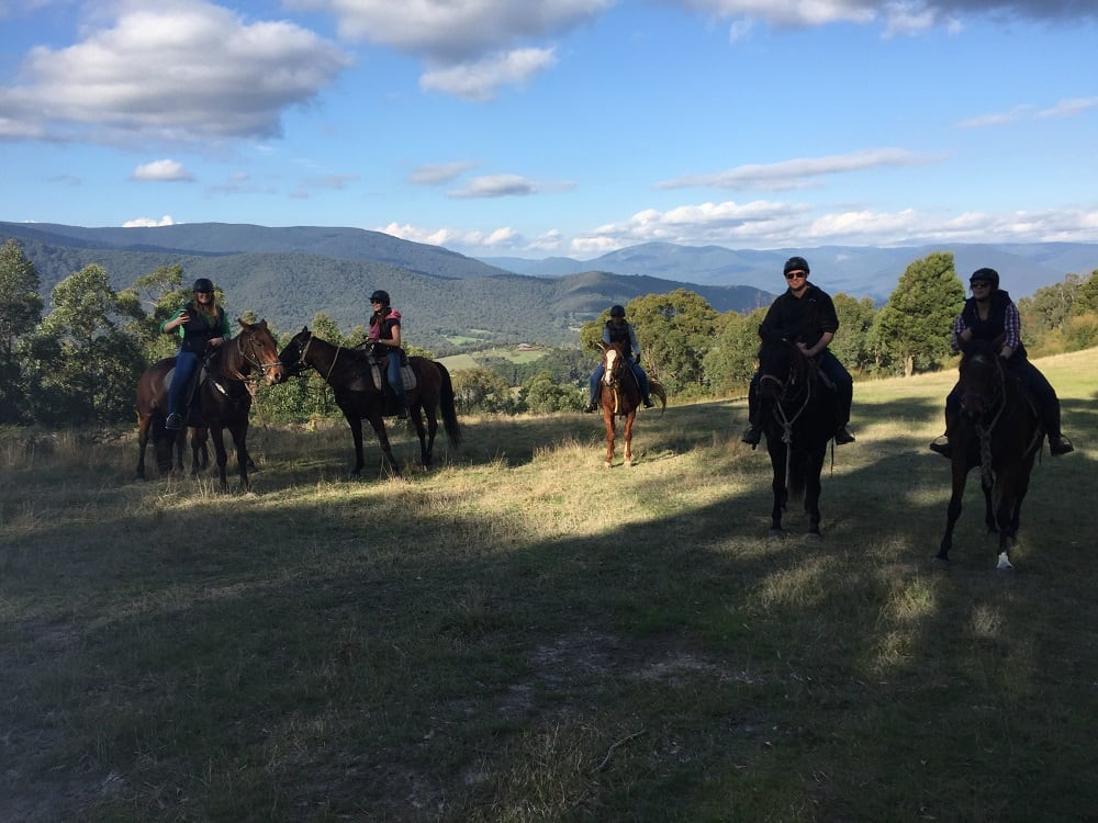 One Day Yarra Valley Wine Tasting Ride - Chum Creek, Yarra Valley Melbourne
