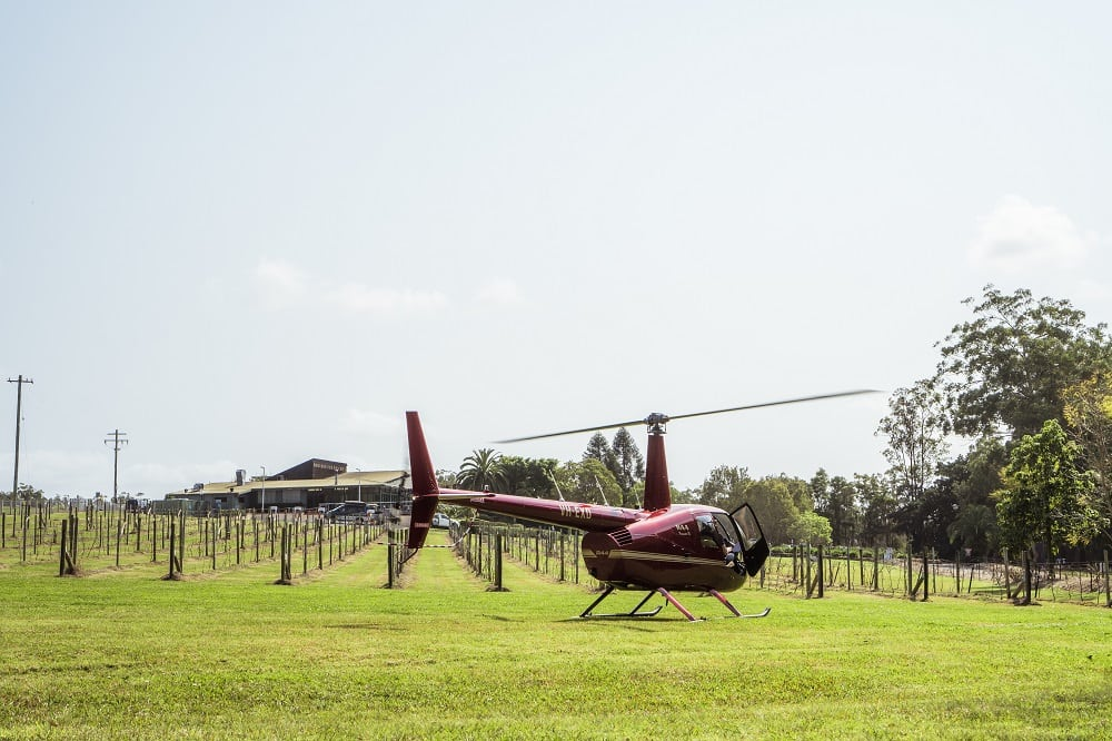 Scenic Helicopter Flight and Beer Tasting at Cassegrain Winery, Port Macquarie - For 2