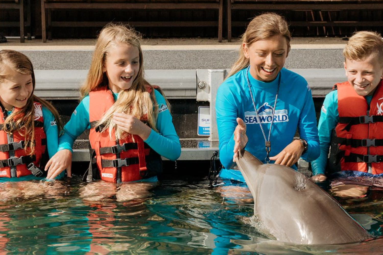 Dolphin Aqua Adventure at Sea World with Day Entry for Child