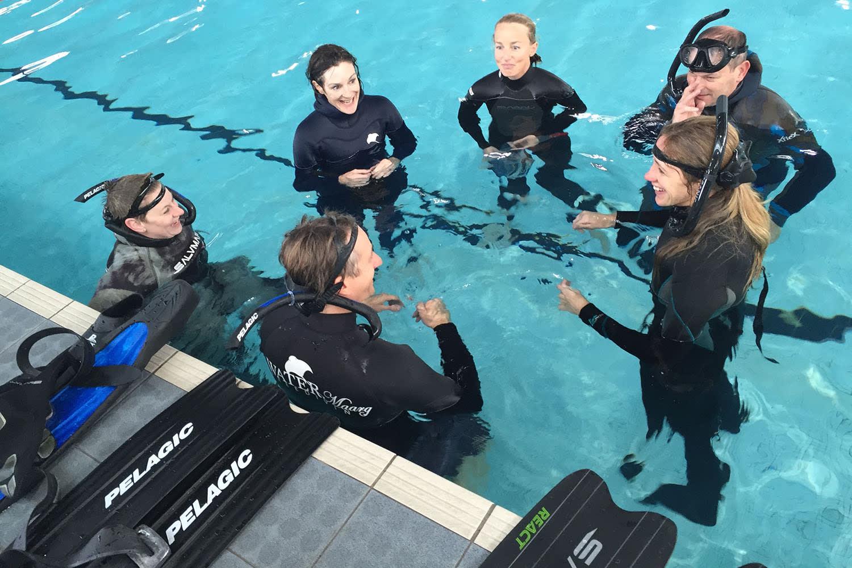 PADI Basic Freediver Course - Cheltenham, Melbourne