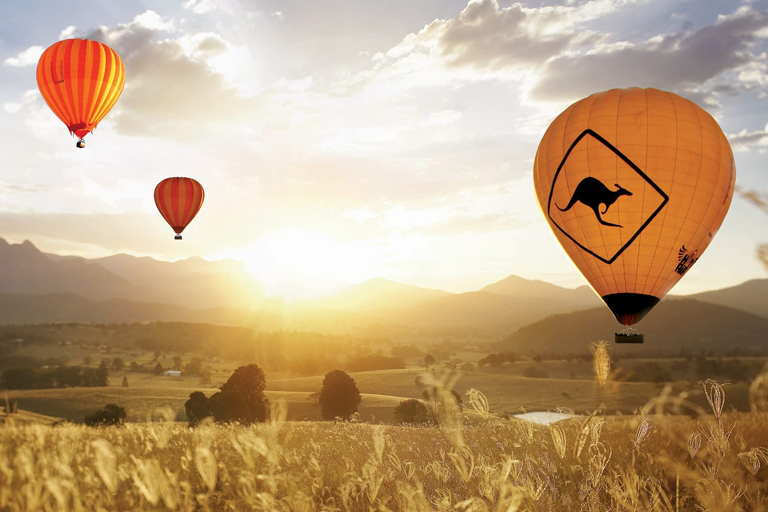 Hot Air Balloon Ride with Champagne Breakfast, 1 Hour - Gold Coast