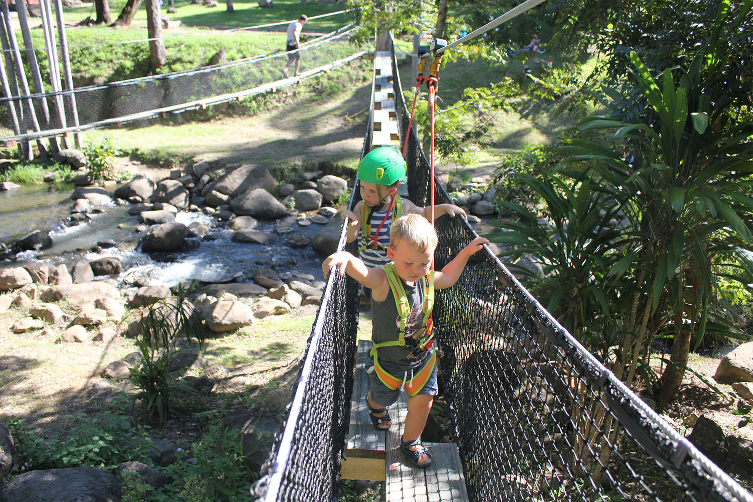 Tiny Tot's High Rope and Zipline Adventure, Tamborine Mountain - Child (aged 3-8)