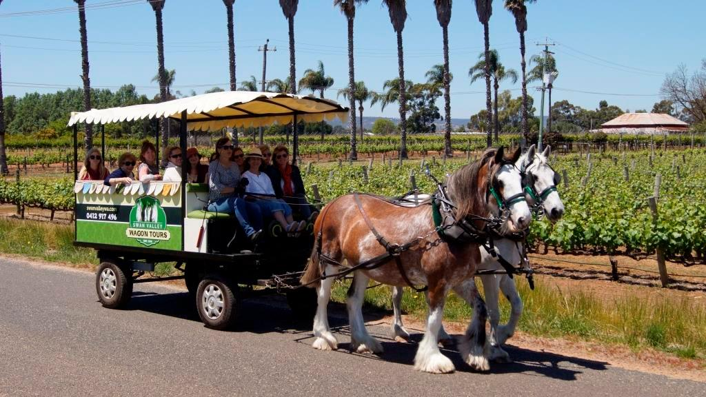 Afternoon Horse-Drawn Wagon Tour, Swan Valley - With Food and Wine Sampling