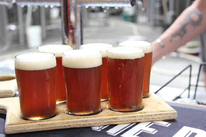 Micro Brewery Tour with Beer Tasting, Sydney - Half Day