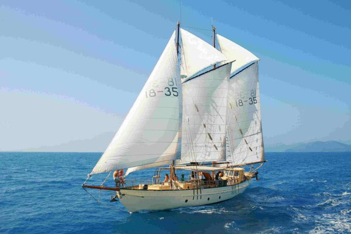 Tallship Sailing and Snorkelling Adventure