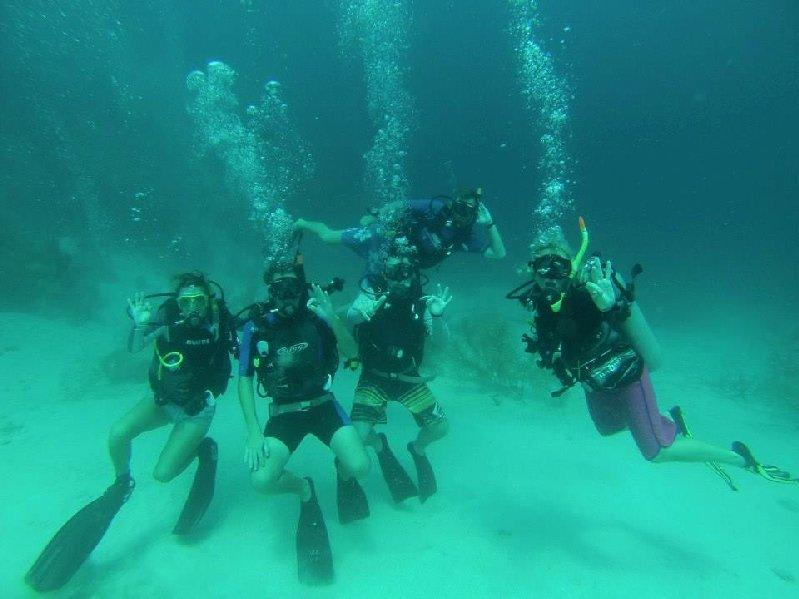 Magnetic Island Intro Dive - 3 Hours