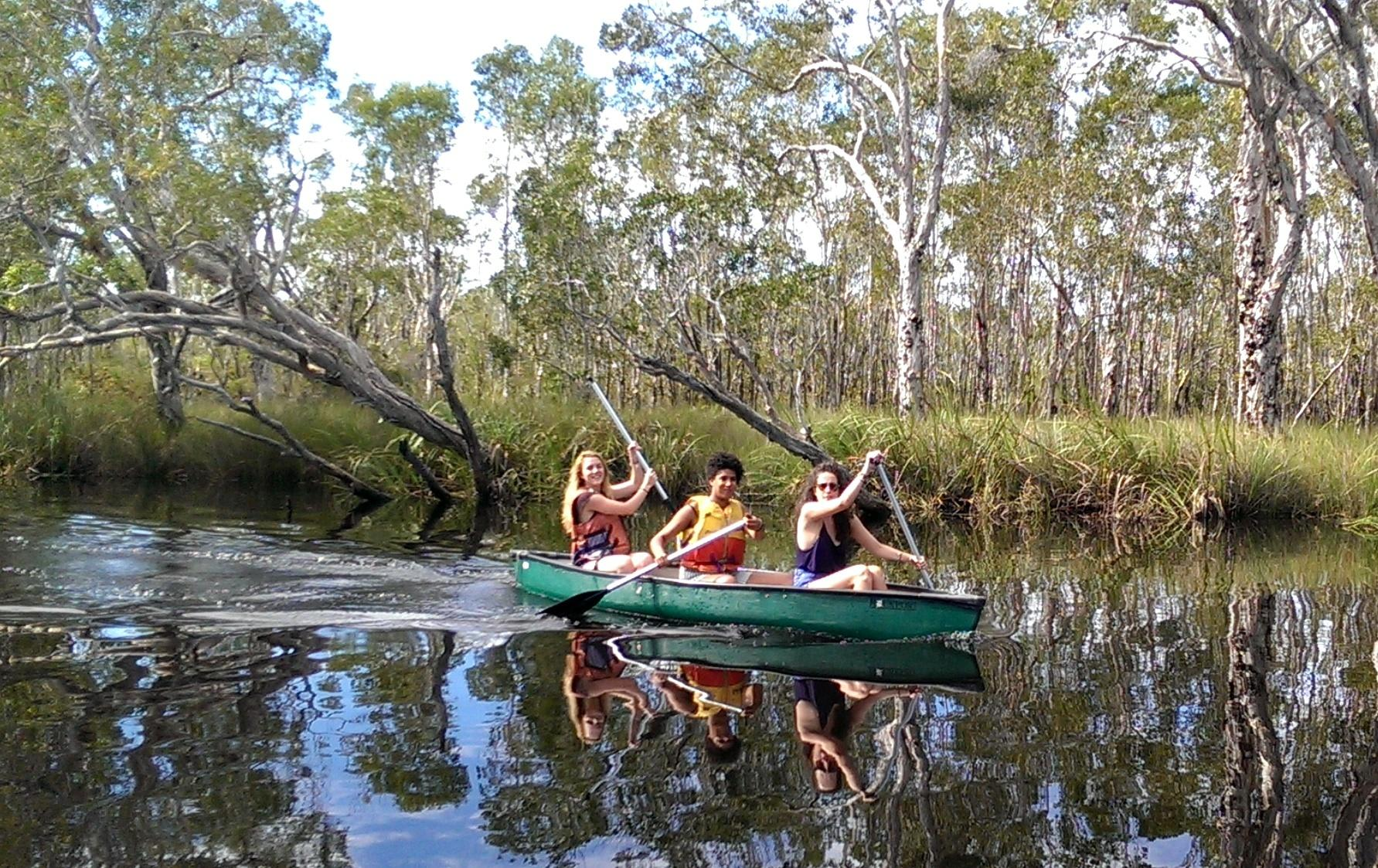 Cruise and Canoe Along Noosa Everglades with Lunch