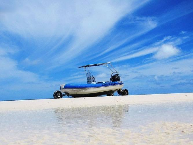 Fraser Island National Park Tour with Whale Watching