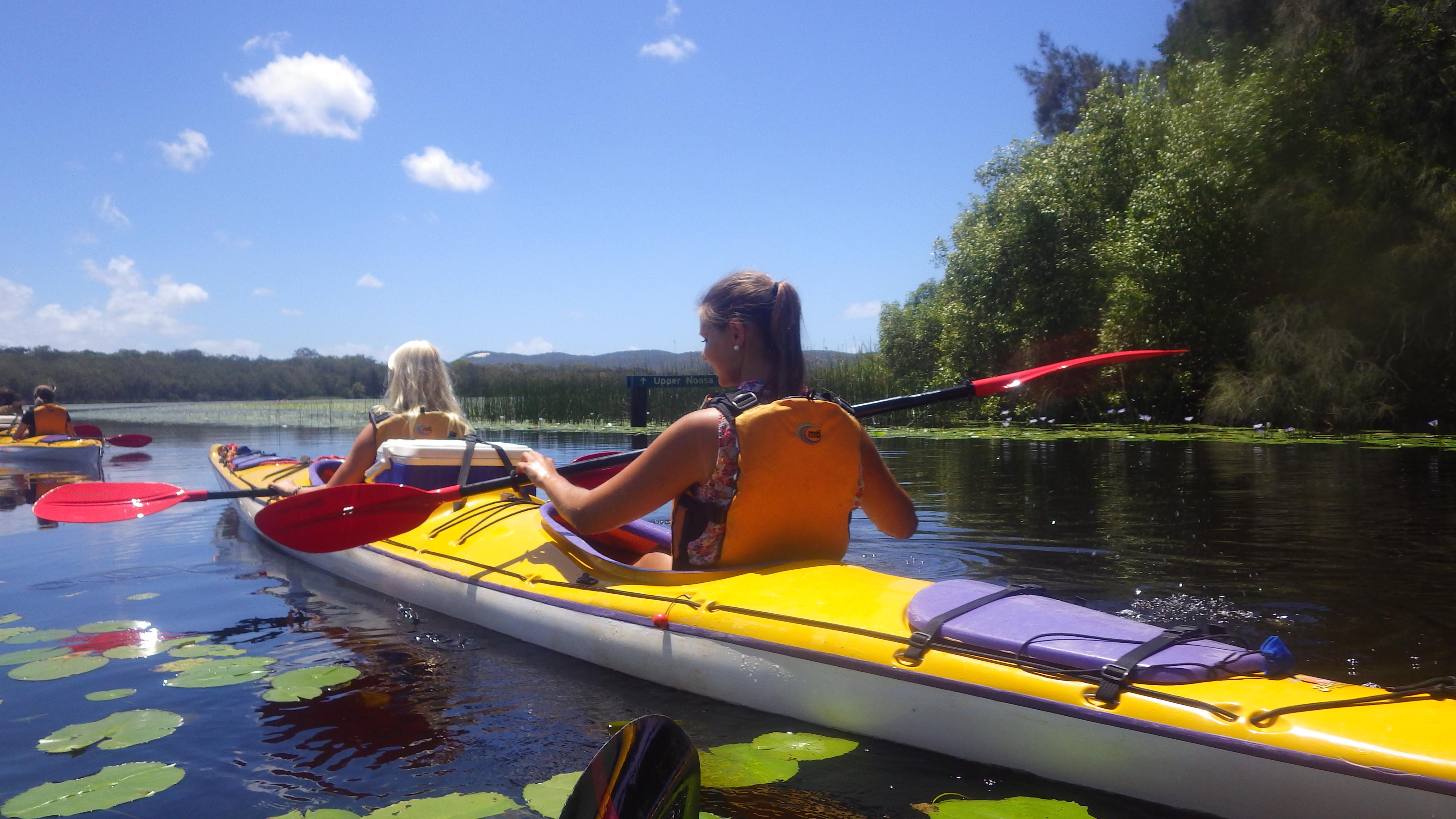 Full Day Guided Kayak on the Noosa Everglades
