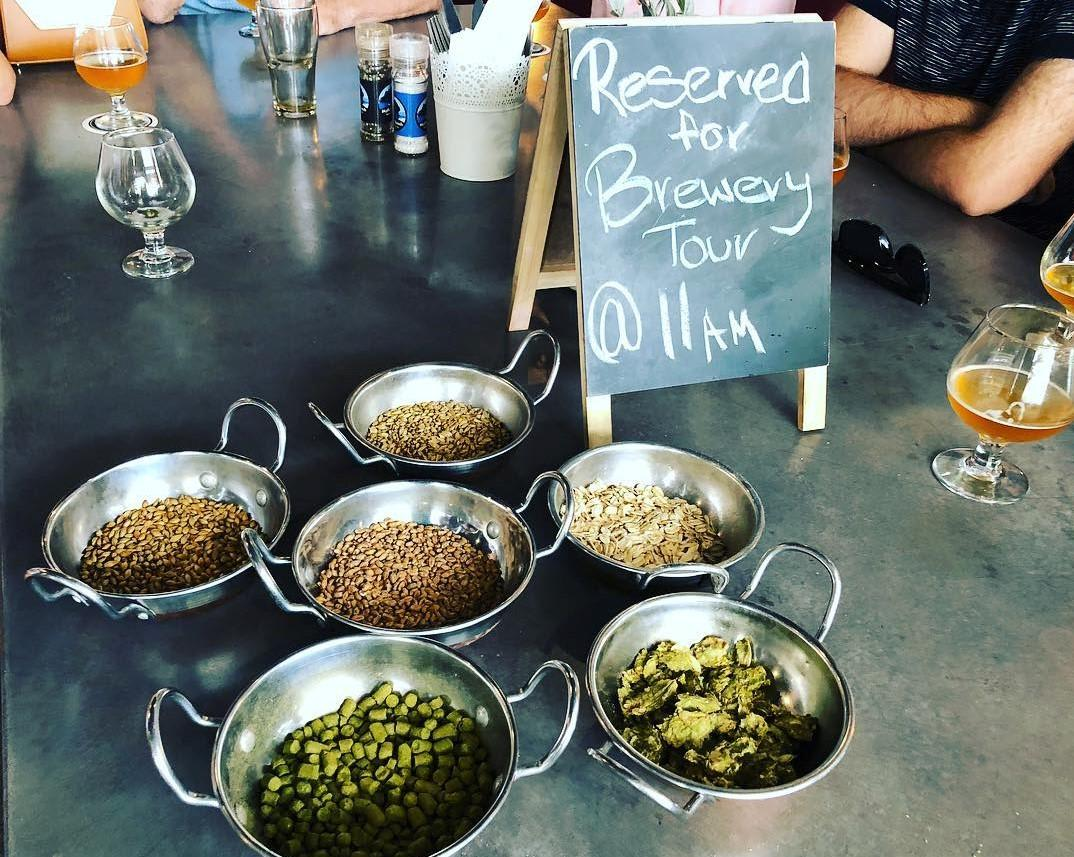 Hinterland Brewery Tour with Tastings and Lunch, Sunshine Coast - 5 Hours