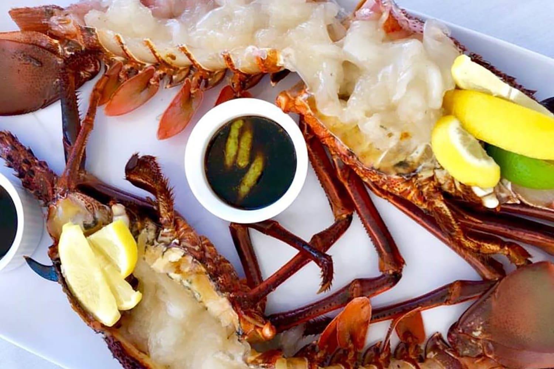 Rottnest Island Wild Seafood Experience