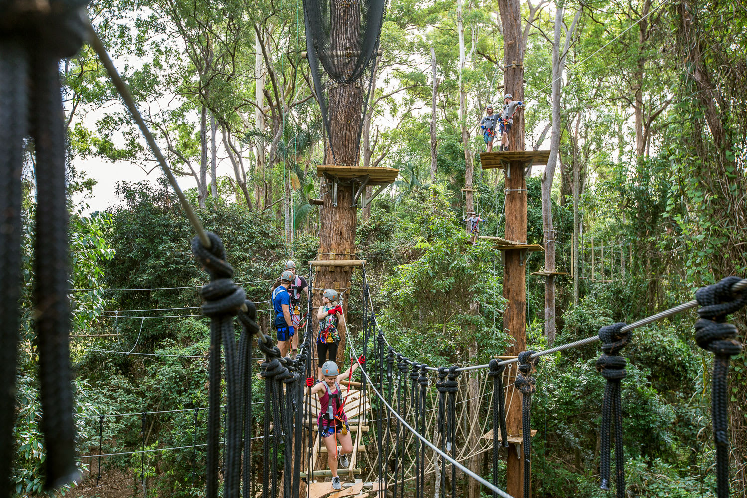 High Ropes and Flying Fox Adventure, Sunshine Coast