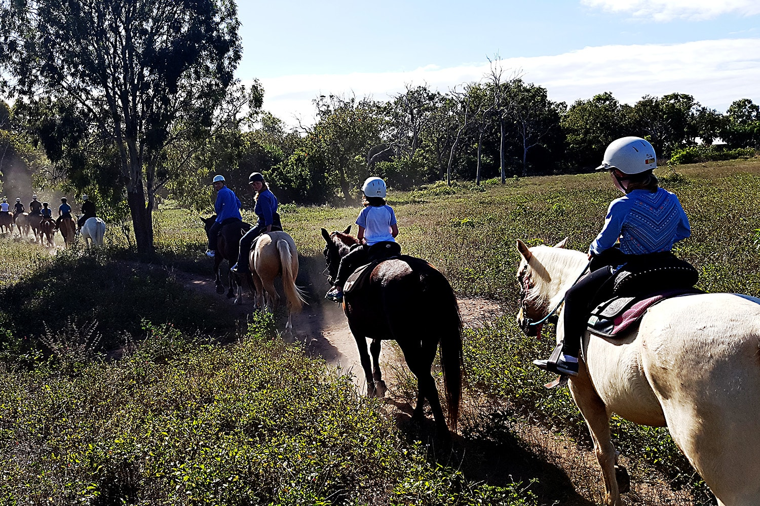 Helicopter Flight and Horseback Riding - Magnetic Island