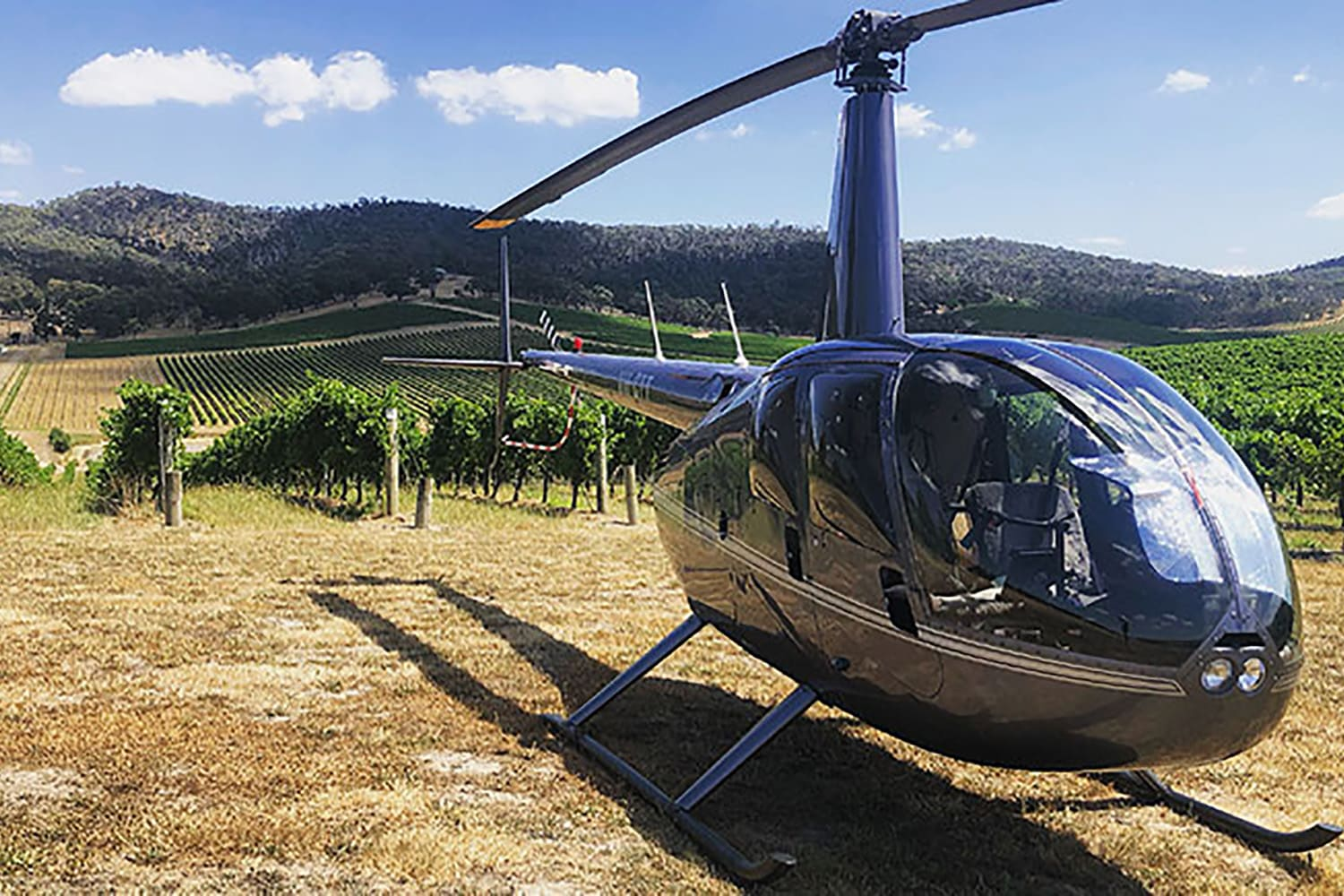 Helicopter Flight to De Bortoli with Lunch For 2