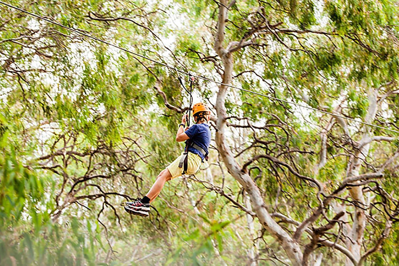 Aerial Adventure Park Course, 2 Hours
