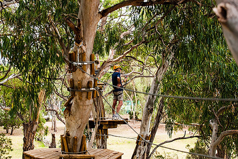 Children's Aerial Adventure Park Course