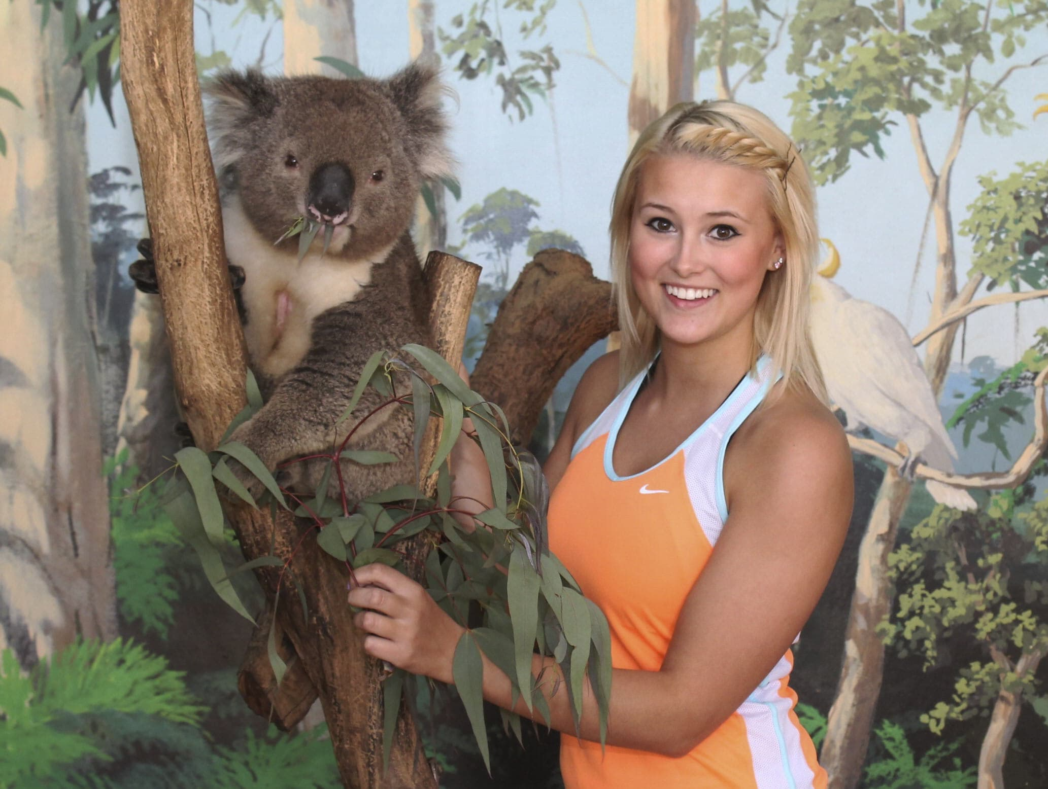 Maru Koala Park and Mini Golf Admission - Grantville, Melbourne