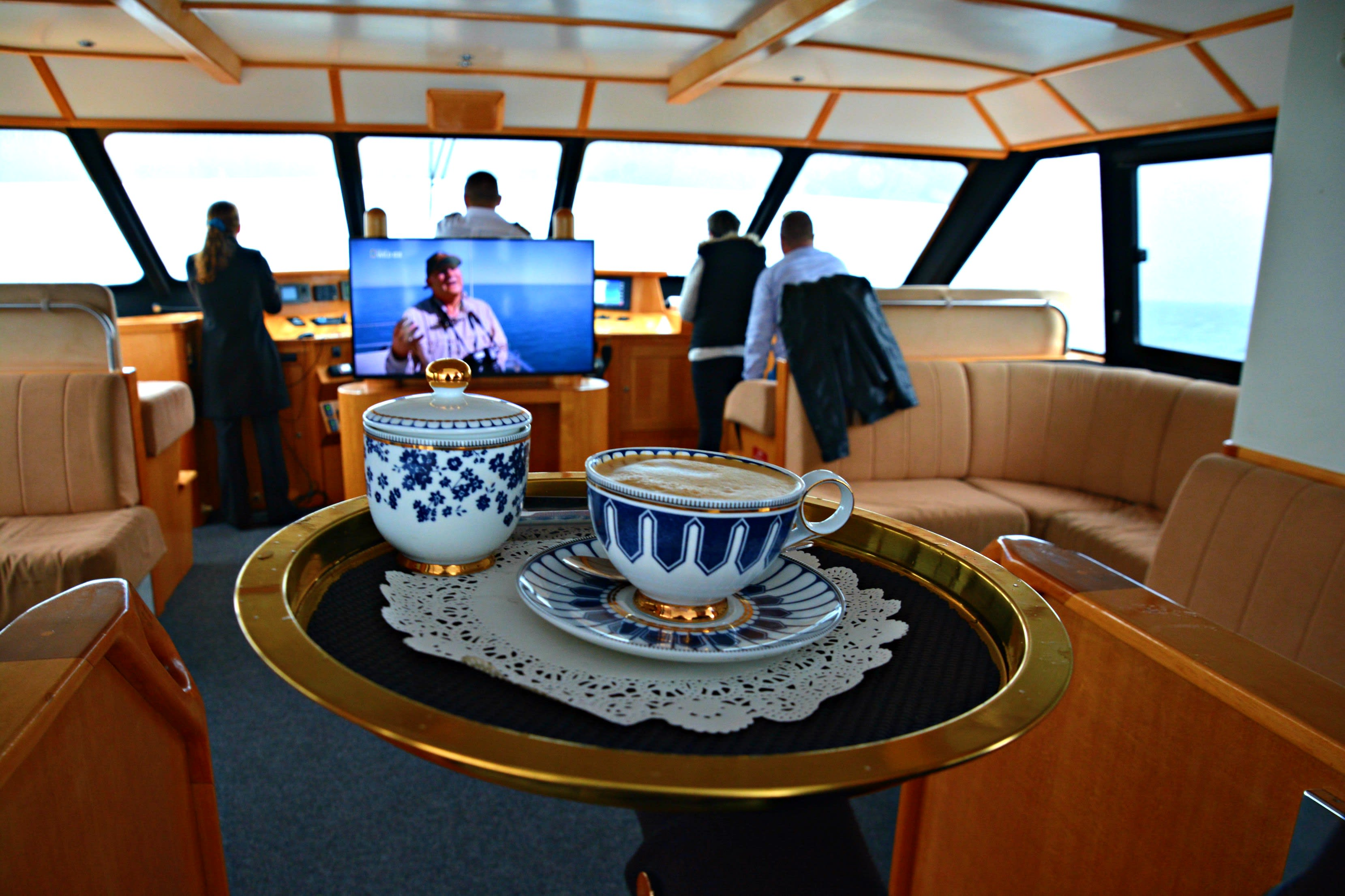 Whale Watching VIP Captain's Lounge - Fremantle, Perth