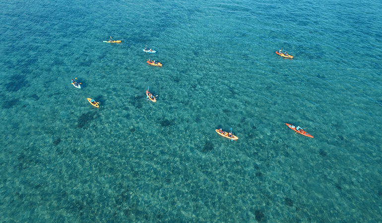 Guided Kayak Tour from Palm Cove to Double Island - Cairns