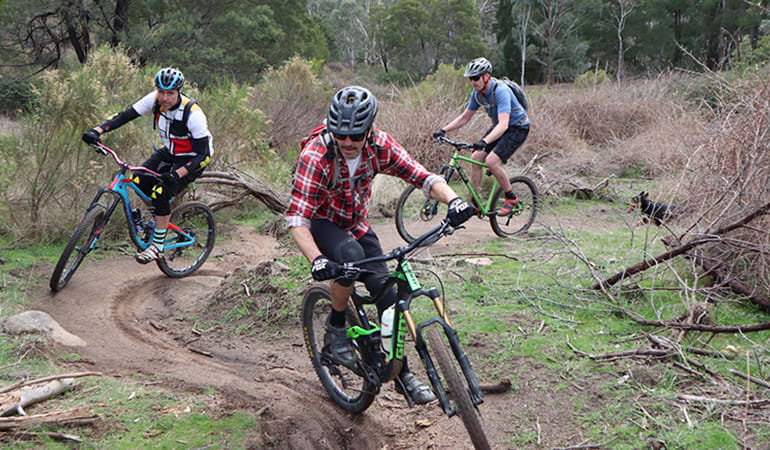 Full Day Mountain Bike Tour with Brewery Lunch - Melbourne