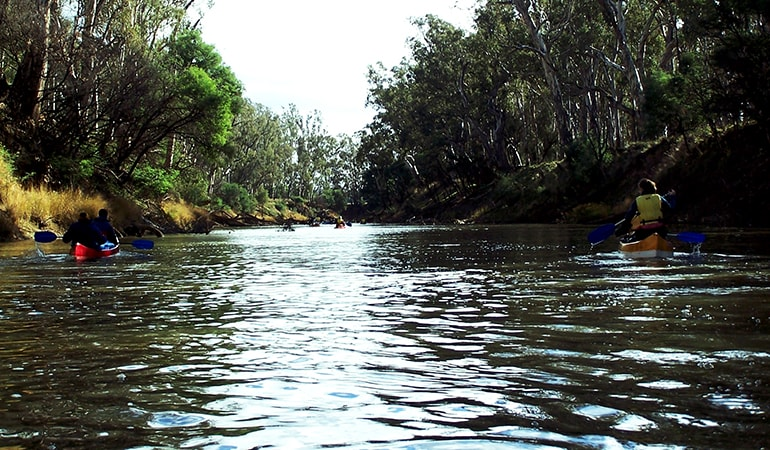 Half Day Canoeing Adventure, For 2 - Goulburn River