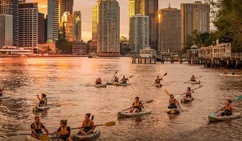 Night Kayak Tour with Prawns and Drinks - Brisbane