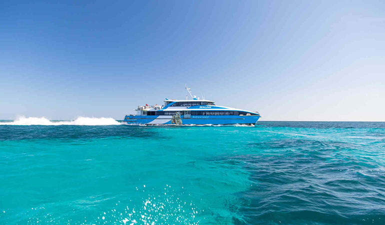 Rottnest Island Return Ferry Ticket - Perth
