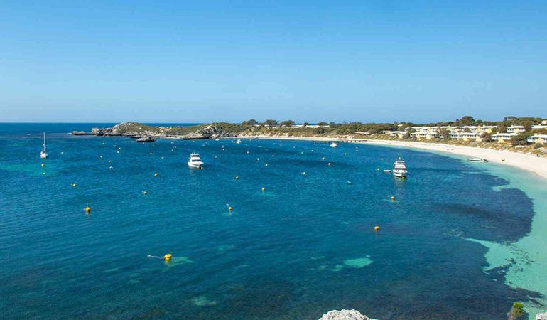 Rottnest Island Segway Tour, 1 Hour - Perth