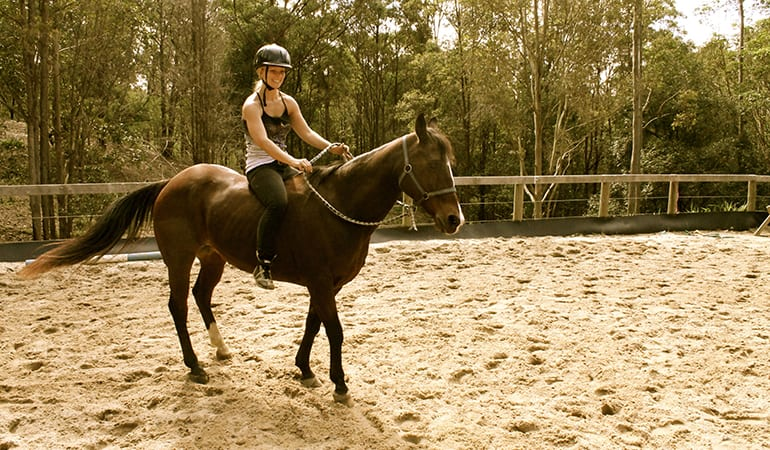 Horse Riding and Half-Day Spa Visit – Gold Coast Hinterland