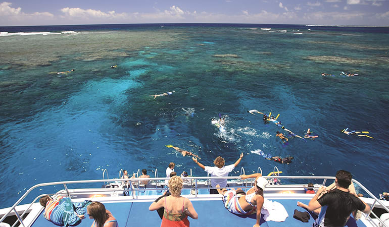 Snorkelling Cruise Tour, Full Day - Great Barrier Reef
