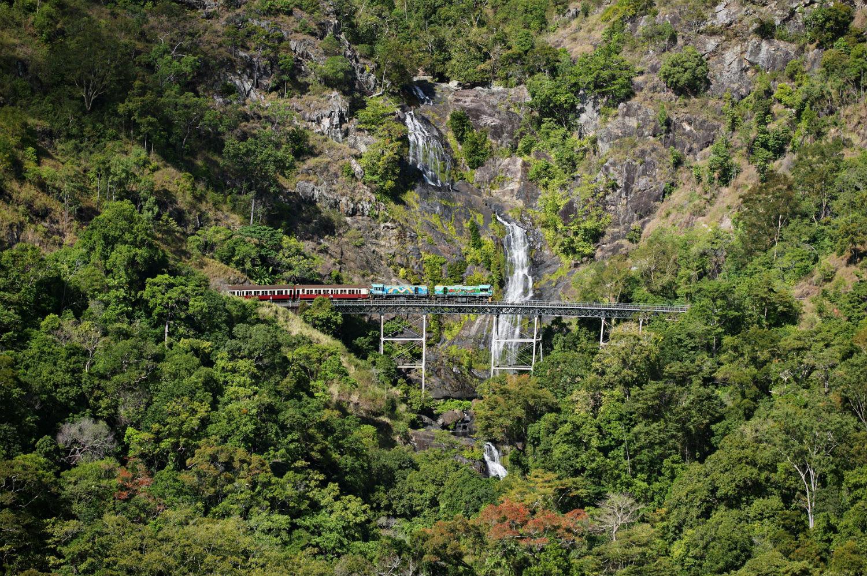 Kuranda, Skyrail and Scenic Rail Rainforest Adventure – departs Port Douglas