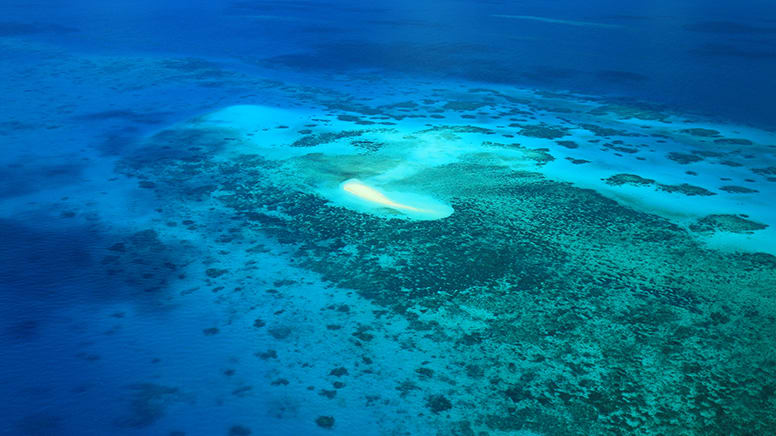 Scenic Flight Over Great Barrier Reef, 30 Minutes - Departs Cairns