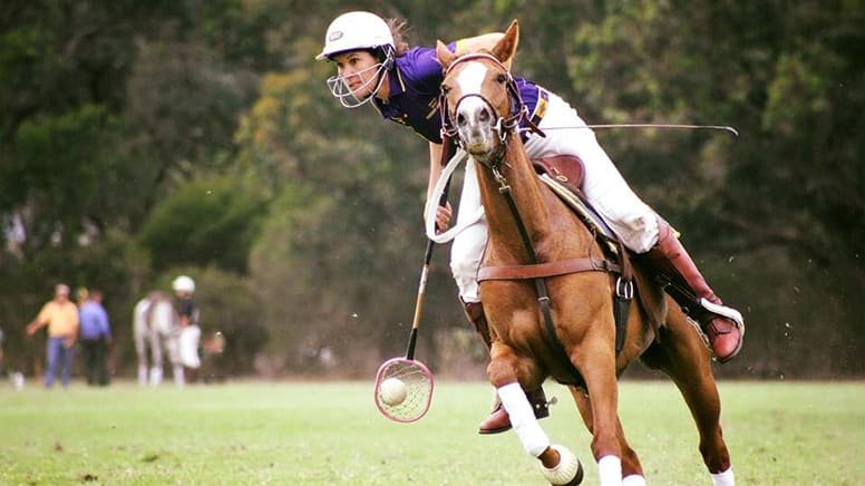 Private Polocrosse Lesson, 1 Hour - Jarrahdale, Perth