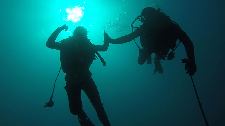 Reef and Wreck Scuba Dive Tour, Half Day - Gold Coast
