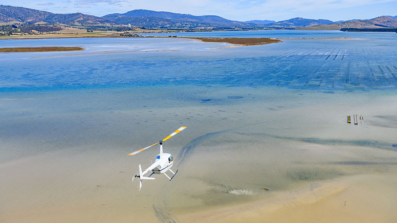 Scenic Helicopter Flight, 15 Minutes - Hobart - For 2