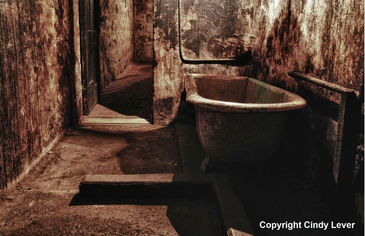 Enter the Lunatic Asylum, Ghost Tour - Ararat