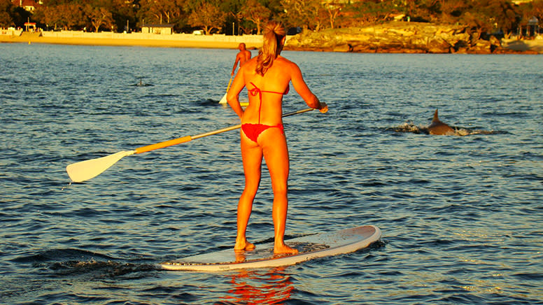 Stand Up Paddle Board Rental, 2 Hours - Spit Bridge, Mosman