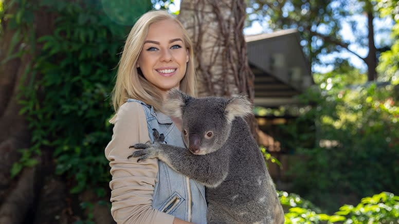 Currumbin Wildlife Sanctuary Entry with Koala Photo - Gold Coast
