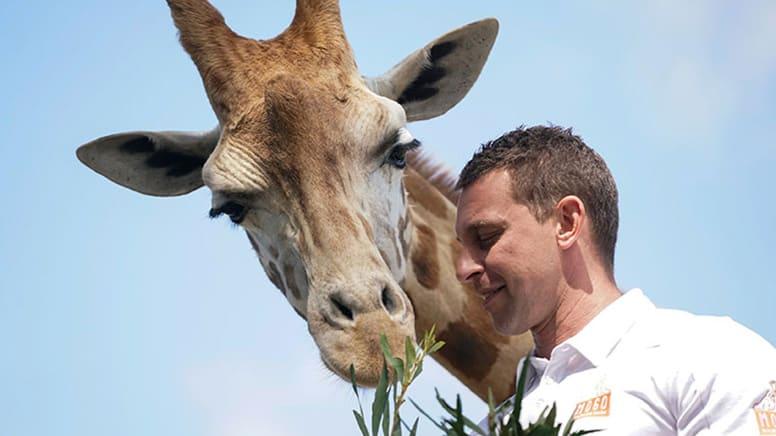 Mogo Wildlife Park Admission - New South Wales