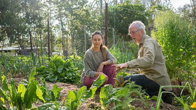 Online Private Organic Garden Coaching, 12 Sessions Over 1 Year