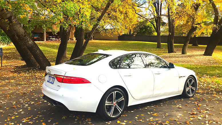 Jaguar XF Tour, 3.5 Hours –Barossa Valley - For 2